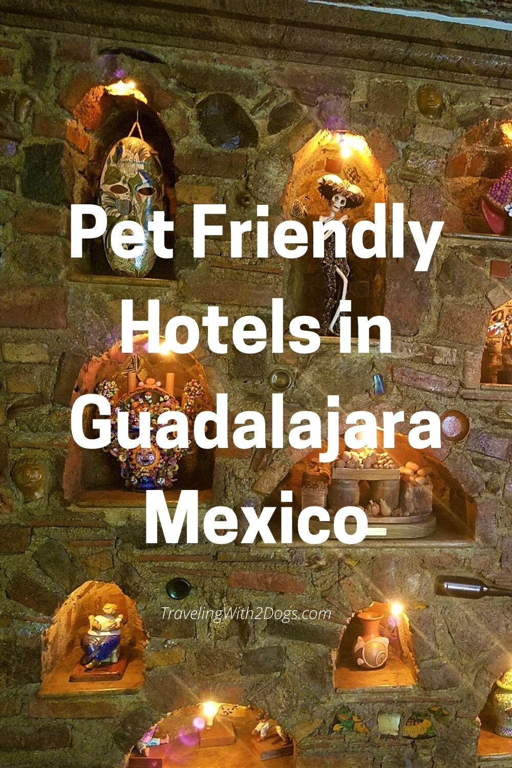 Pet Friendly Guadalajara Mexico