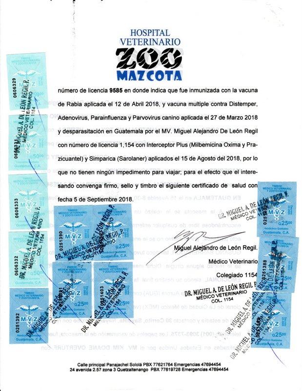 maga-export-certificate-guatemala