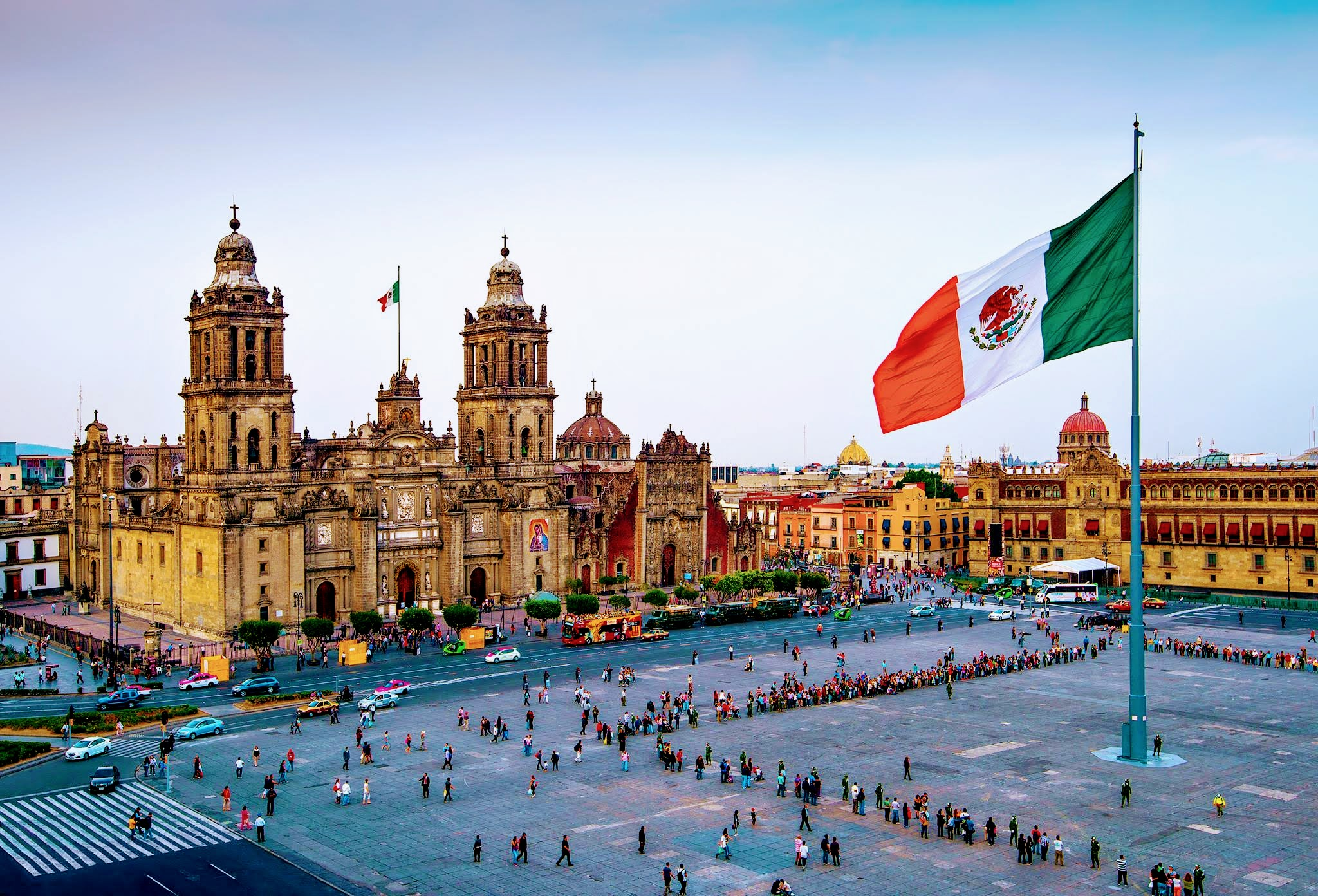 """Mexico's """"Frequent Traveler Program""""  For Your Dog or Cat"""