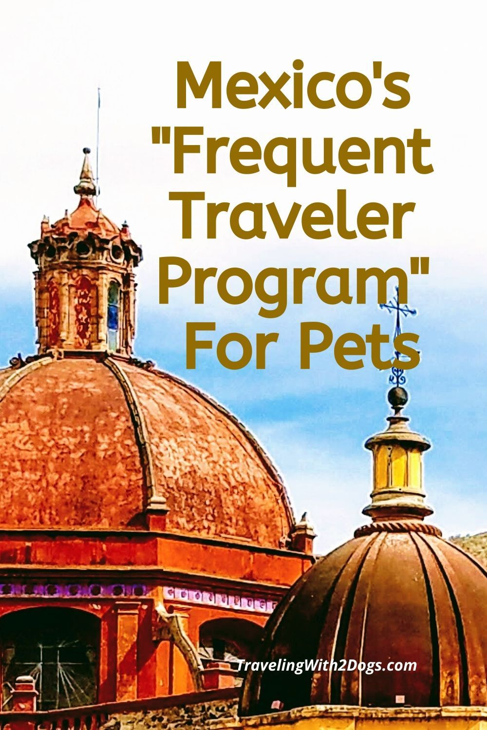 """You are currently viewing Mexico's """"Frequent Traveler Program""""  For Your Dog or Cat"""