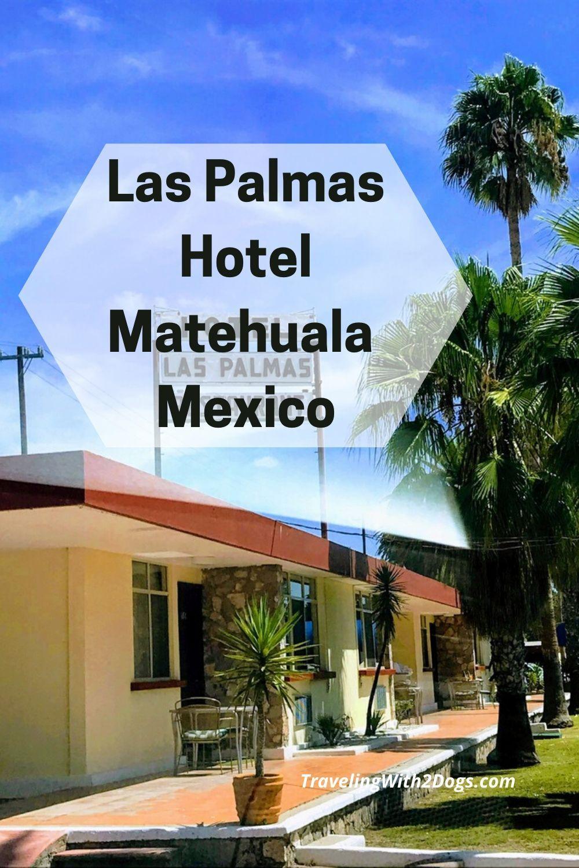 Pet Friendly Las Palmas Hotel in Matehuala
