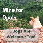 Pet Friendly Opal Mine Excursion in Tequisquiapan