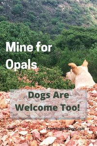 Pet Friendly Opal Mine Excursion in Tequisquiapan