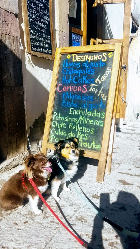 real-de-catorce-restaurants