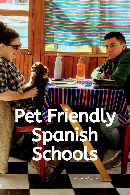 Pet-Friendly Spanish Immersion Schools