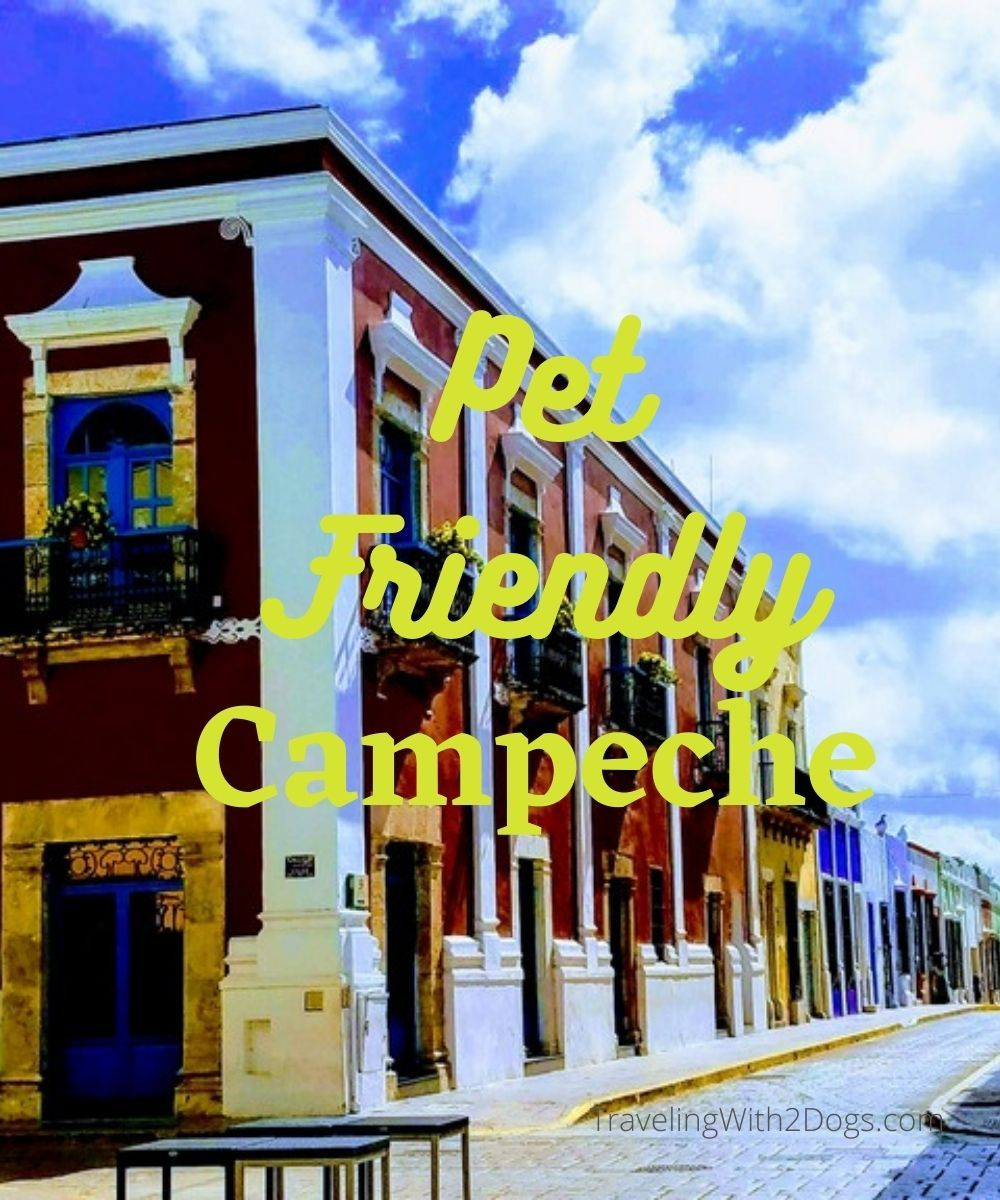 Campeche – Review On A Pet Friendly Vacation Rental
