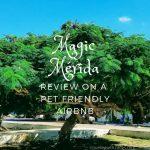 Pet Friendly Airbnb – Mérida Mexico
